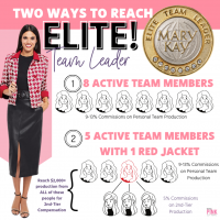 New Elite Team Leader!